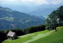 Maisäß am Plankenberg St. Gerold (Großwalsertal)