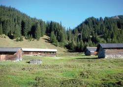 Zuger Alpe, Lech